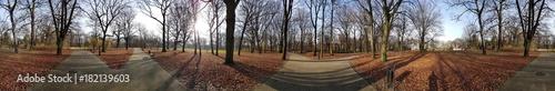 Keuken foto achterwand Panoramafoto s Park jesienią. Panorama