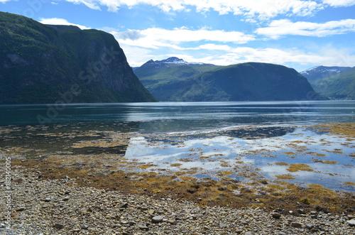 In de dag Nachtblauw Fiordos de Noruega
