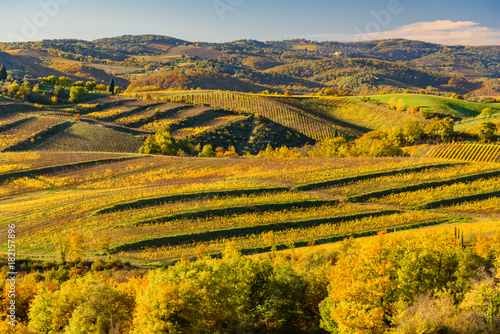 Poster Honing sunset over the chianti hills in autumn in province of Siena Tuscany Italy...