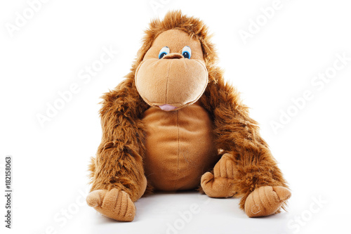 Plexiglas Aap Monkey plush toy in studio. brown monkey,cute monkey,fake monkey,plush monkey,toy monkey,chimpanzee,jocko,gorilla,anthropoid,hominids,monkey toy,monkey plush,monkey with white background.
