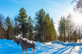 Moose with powerful horns resting in forest - 182159089