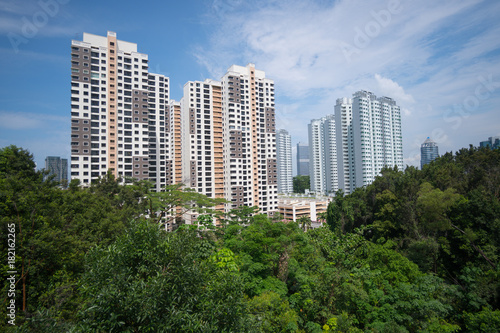 Residential buildings in Singapore, among green parks Poster