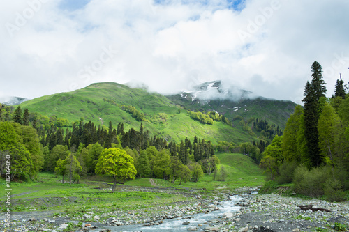 Fotobehang Bergrivier Mountain river in the forests of Abkhazia