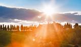 Italy, Tuscany region. Beautiful panoramic landscape of traditional Tuscan nature. Sunrise dawn scenery. - 182188869