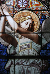 Stained glass in notre dame compassion,  Paris, France