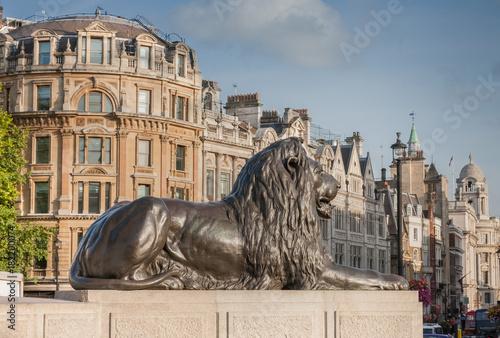 Staande foto Londen Statue of Lion on Trafalgar Square in London, United Kingdom.