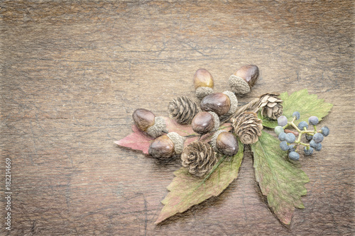 rustic wood with fall decoration