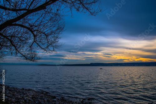 Poster Nachtblauw Wasser am See