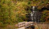 Waterfall Bridge in the Woods