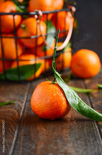 Fresh tangerine clementines with leaves on dark wooden background, selective focus.