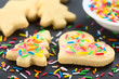 Homemade baked sugar cookies for Christmas with icing and colorful sprinkles on the top (Selective Focus, Focus one third into the image)