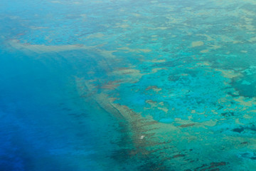 A Reef from Above