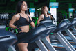 Quadro two woman run treadmill in gym