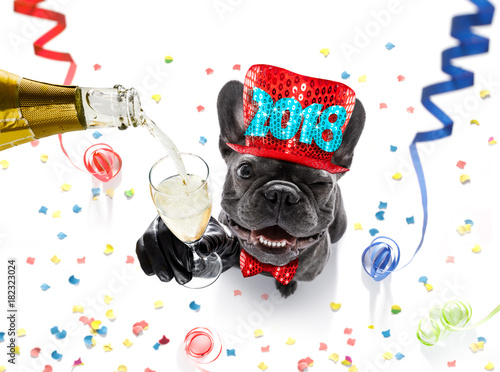 Foto op Canvas Aap happy new year dog celebration