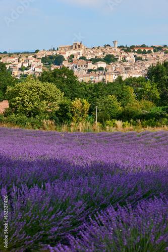 Papiers peints Lavande Village and lavender in Provence