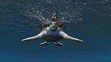 ウミガメ - 182328459