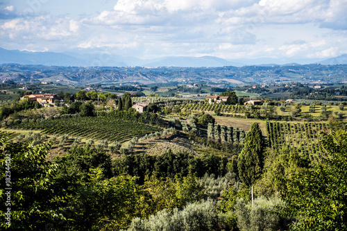 Fotobehang Wijngaard Wineyard in Italy Toscany Chianti Region Panorama