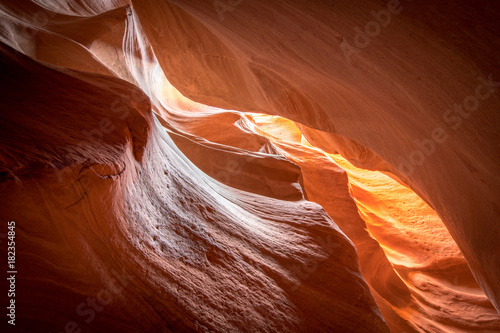 Foto op Canvas Arizona Zion Slot Canyon