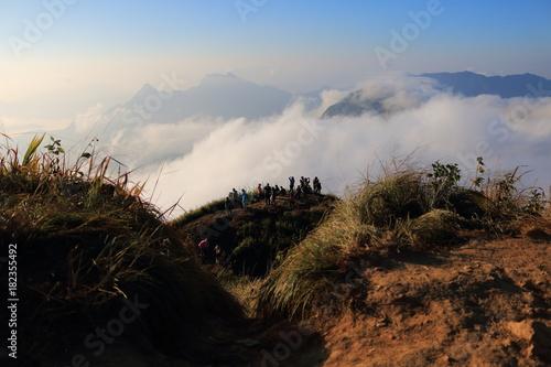 Foto op Canvas Zwart morning in foggy
