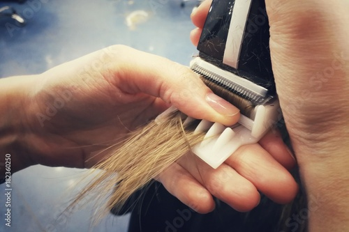 Keuken foto achterwand Kapsalon Haircut in the beauty salon, polishing hair with a special typewriter with a nozzle, healthy hair, close-up,
