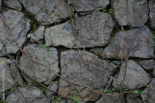 Tuinposter Stenen Gray Rock Ancient Wall