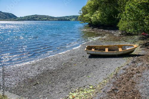 Foto op Canvas Natuur Loch Hyne nature reserve, Wild Atlantic Way, Ireland
