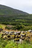 The Sheep's Head Peninsular,Wild Atlantic Way,Ireland - 182388602