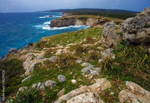 Canvas Cyprus Last point of Karpaz peninsula - cape Zafer Burnu, North Cyprus
