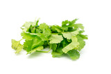 Fresh Coriander Leaves - 182396291