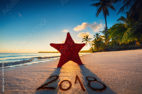 Foto auf Acrylglas See sonnenuntergang Starfish on the beach with palm trees at sunrise. Happy new year 2018 concept.