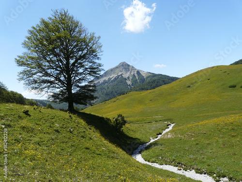 Fotobehang Zomer Paisaje de montaña