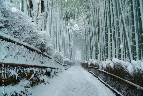Deurstickers Kyoto 京都嵐山竹林の雪景色