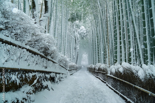 Keuken foto achterwand Kyoto 京都嵐山竹林の雪景色