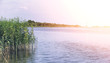 Landscape lake. Texture of water. The lake is at dawn. The mouth
