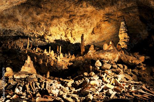 Höhlenbär Knochen in Tropfsteinhöhle