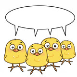 cute yellow chicks and speaking