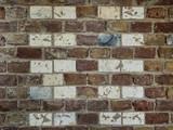 brick wall with pattern of white bricks