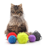 Cat and multicolored balls.