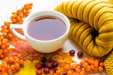 a cup of tea with sea-buckthorn and cranberry - 182459600