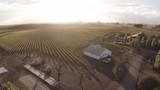Vineyard, wide scenic aerial - 182463440