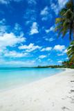 beach background - 182468248