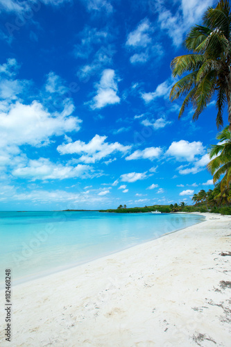 Foto op Canvas Tropical strand beach background
