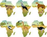 African savannah with secretary bird, crowned crane, hyenna, cobra, cheetah, gazelle, giraffe, ostrich and zebra - vector illustration - 182475624