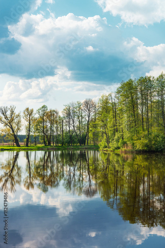 Foto op Canvas Pool Trees and sky reflecting at pond Bialowieza National Park Poland