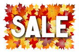 Sale illustration - fall/ autumn motive - 182481458