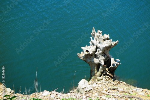 Plexiglas Groen blauw 湖と公園の風景21