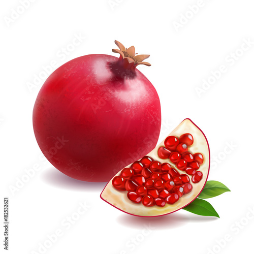 Pomegranate or garnet realistic vector