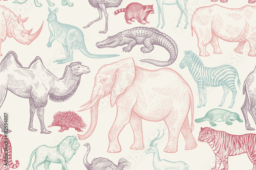 Seamless pattern with animals. - 182534887