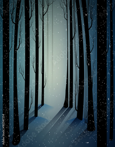 deep fairy frosty winter forest with mistery light, shadows, sullen winter forest, scared cold frosty woods, - 182547254