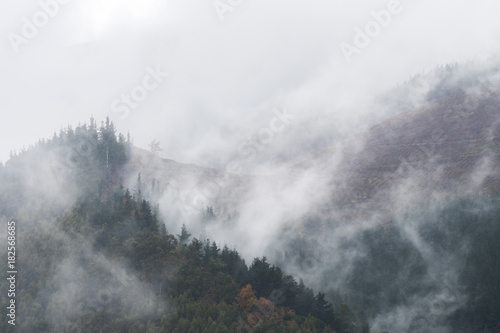 foggy morning at mountains - 182568685